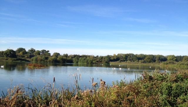 Lakeside, Sennowe Park